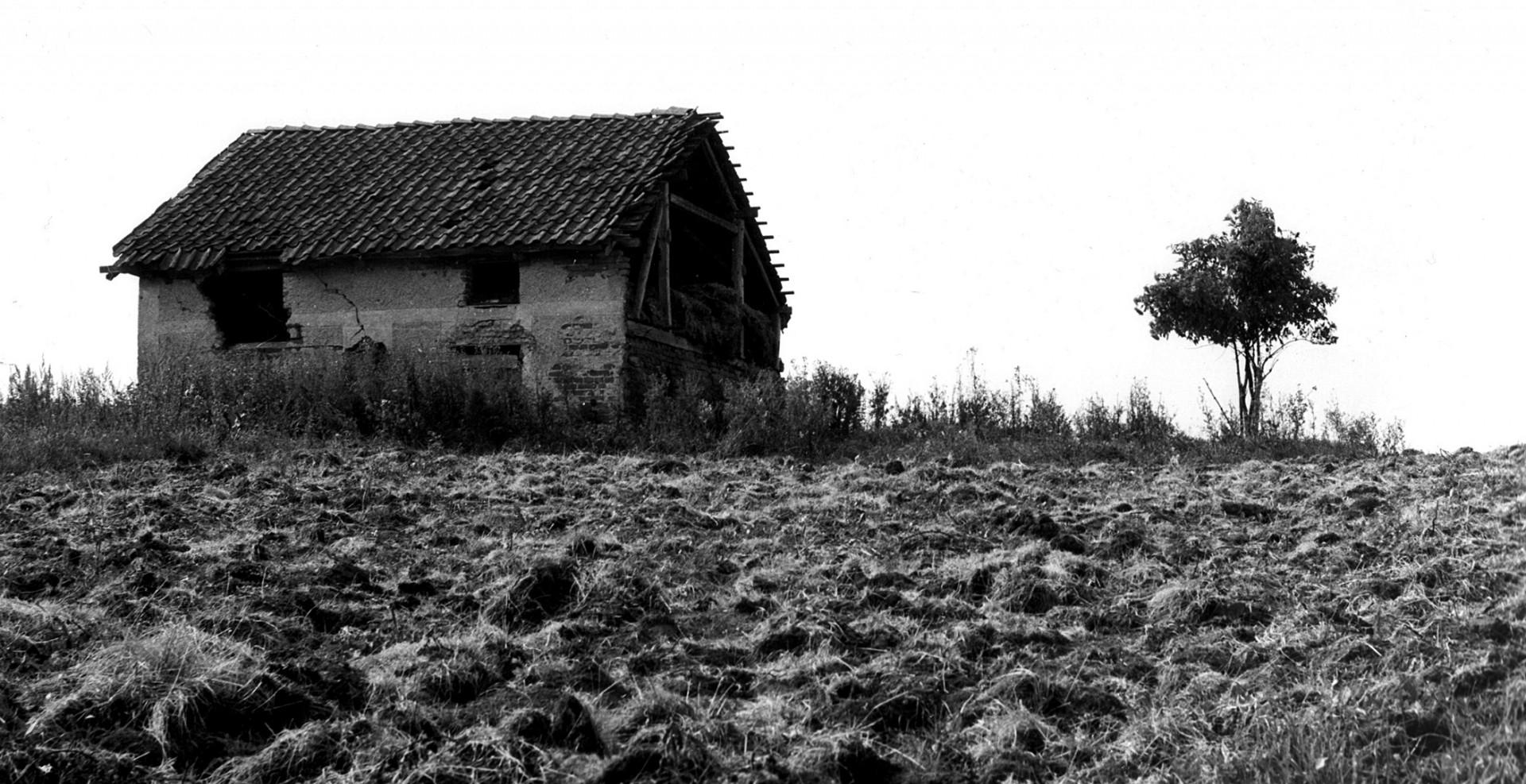Reportage-Fotograf-in-Paris-Reportage-Fotografie-Haus-mit-Baum-in-Polen