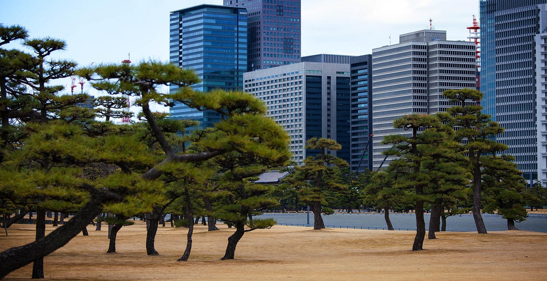 Reportage-Fotograf-in-Paris-Reportage-Fotografie-von-Tokio